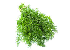Dill herb Stock Photos