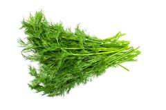 Dill herb fresh leaves pile isolated on white background. Fennel isolated. Dill herb fresh leaves pile isolated on white background stock photo