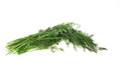Dill. Isolated object. Stock Photos