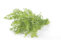 Dill isolated on white Royalty Free Stock Photography