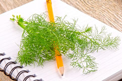 Dill on a kitchen notebook Royalty Free Stock Images