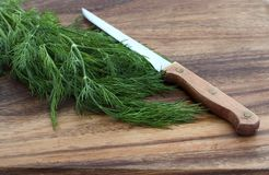 Dill and knife on a cutting board Royalty Free Stock Image