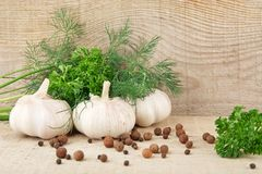 Dill leaves,garlic,pepper and allspice on wooden planking background Stock Images