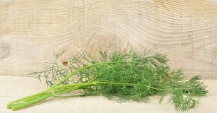 Dill leaves on wooden planking background Royalty Free Stock Photography