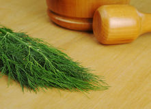 Dill with Mortar and Pestle Royalty Free Stock Photos