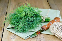 Dill with napkin and twine on board Royalty Free Stock Photo