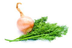 Dill and onion Stock Photo
