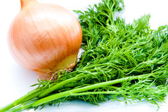 Dill and onion Royalty Free Stock Images