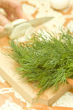 Dill and onion. Green fresh organic dill and hand and knife cutting an onion in the background royalty free stock photos