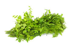 Dill and parsley Stock Photos