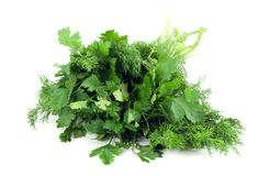 Dill and parsley Stock Images