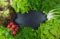 Dill, parsley, cilantro, radishes, onions, lettuce, on a dark ba. Fresh vegetables and spices on a dark wooden background. Top view. Concept. Proper nutrition Stock Photos