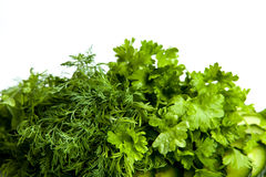 Dill and parsley. Close-up on white Stock Image