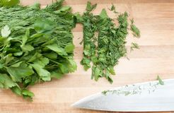 Dill and parsley on the cutting board Royalty Free Stock Image