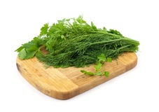 Dill and parsley Royalty Free Stock Photos