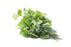 Dill and parsley Stock Photo