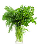 Dill and parsley in glass Stock Photos