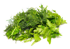 Dill and parsley. Isolated on white background stock photo