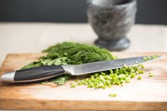Green spices on the kitchen table Royalty Free Stock Photography