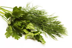 Dill and parsley for a salad. Green vegetables (dill and parsley) for a salad royalty free stock photo