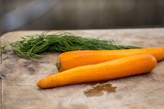 Dill and peeled carrot Stock Photo