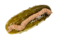 Dill pickle with anchovy paste on top Stock Image