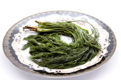 Dill on plate. And on white background Stock Images