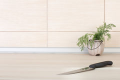 Dill in pot and knife on the countertop Royalty Free Stock Photo