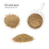 Dill seed spice Royalty Free Stock Photography