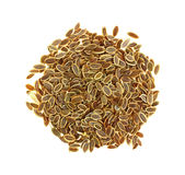 Dill Seeds Royalty Free Stock Images