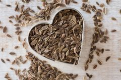 Dill Seeds. In a heart shape Royalty Free Stock Photography
