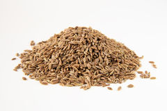 Dill seeds macro Stock Photos