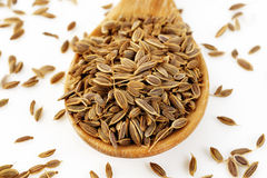 Dill seeds in spoon Royalty Free Stock Images