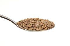 Dill seeds on a teaspoon Royalty Free Stock Photo