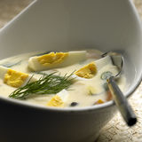 Dill soup Stock Photography