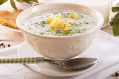 Dill soup. A fresh and tasty Dill soup Stock Image