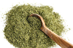 Dill Spice Stock Images