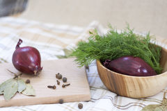 Dill and spices. Red onions in a wooden bowl royalty free stock photography