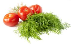 Dill with tomato over white Stock Images
