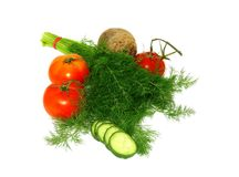 Dill, tomatoes, cucumber and beet isolated on whit Royalty Free Stock Photography