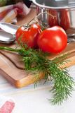 Dill und Tomaten Stockbilder