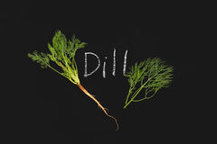 Dill vegetable ingredient nature green blackboard Stock Photography
