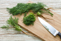 Dill vegetable ingredient nature organic green chopped Stock Photos