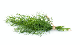Dill on white Royalty Free Stock Photos