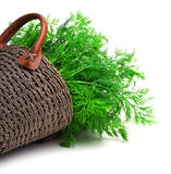 Dill in the wicker basket isolated on white background stock image