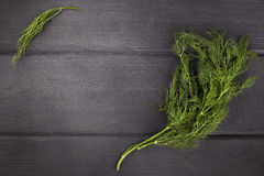 Dill  on  wood background. Top view with copy space. Dill bunch on  wood background. Top view with copy space Royalty Free Stock Images