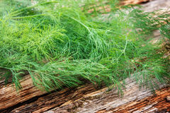 Dill on wooden board Royalty Free Stock Photos