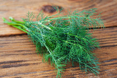 Dill on wooden table Stock Image
