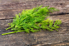 Dill on a wooden underground Stock Image