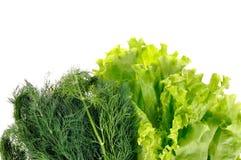 Dille en salade stock foto's